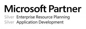 2013 Microsoft Partner